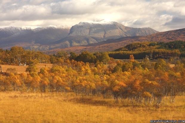 ben-nevis-autumn
