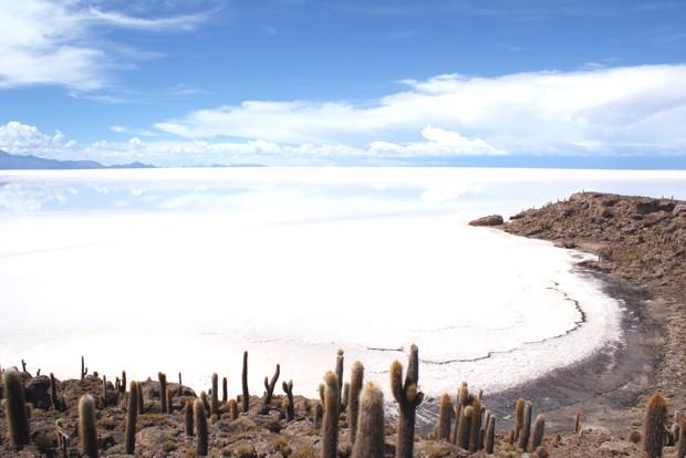 cactus-island-salar-de-uyuni