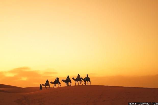 caravan-sahara-desert