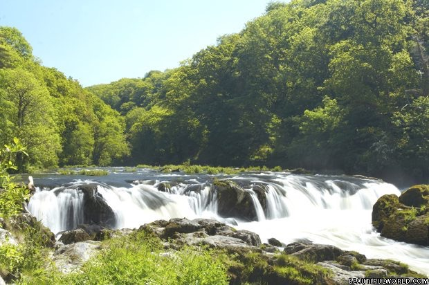 cenarth-falls