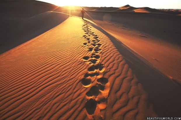 footprints-namib-desert