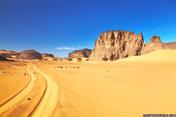 road-in-sahara-desert