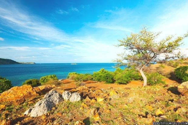 seraya-island-komodo-national-park