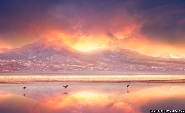sunset-over-andes-mountains-and-atacama-desert