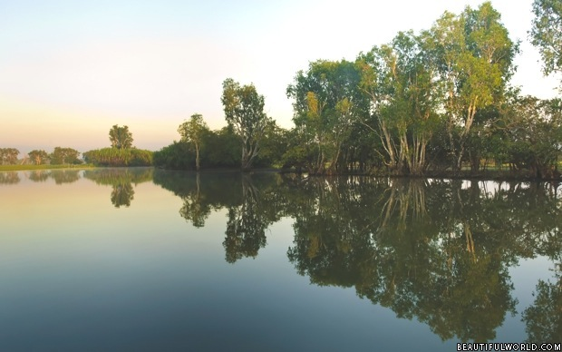 yellow-water-billabong-kakadu-national-park