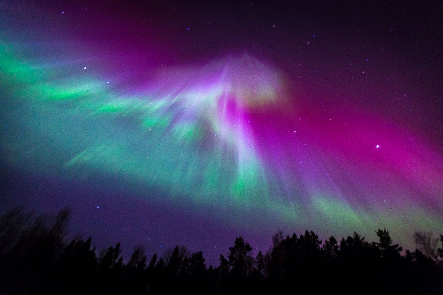 purple aurora borealis wallpapers x - photo #37
