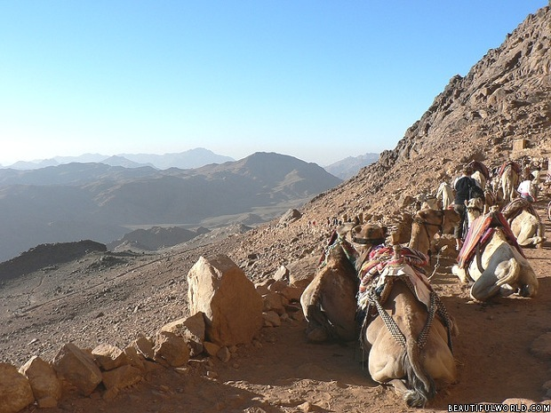Where Is Mount Sinai >> Mount Sinai Facts Information Beautiful World Travel Guide