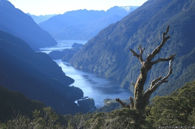 doubtful-sound-fiordland-national-park