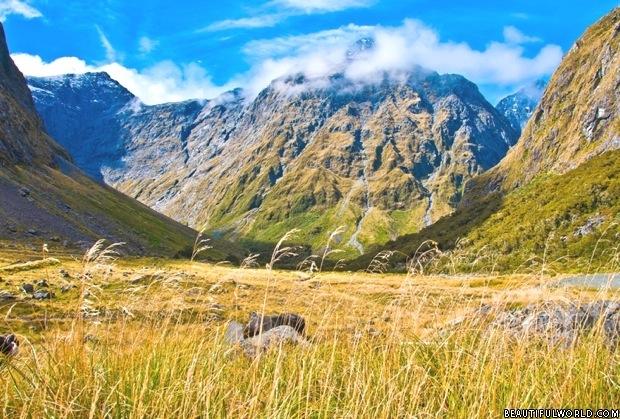 fiordland-national-park