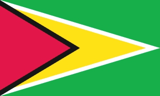 flag-of-guyana