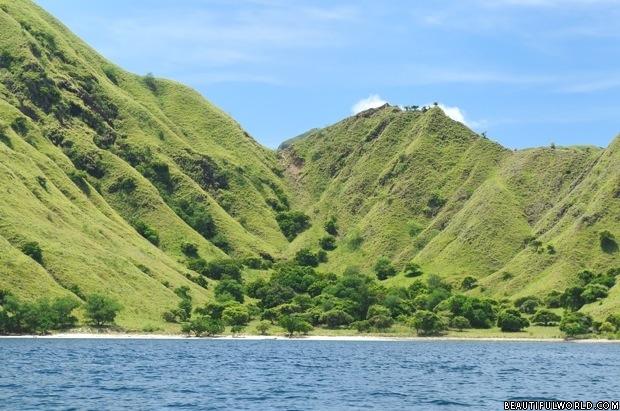 komodo-national-park-landscape