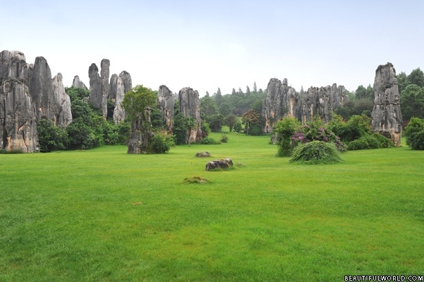 stone-forest-national-park-yunnan-province