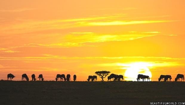 sunrise-serengeti-national-park