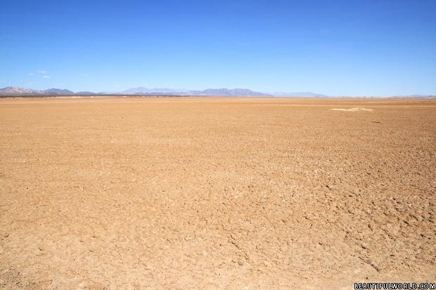 the-mojave-desert