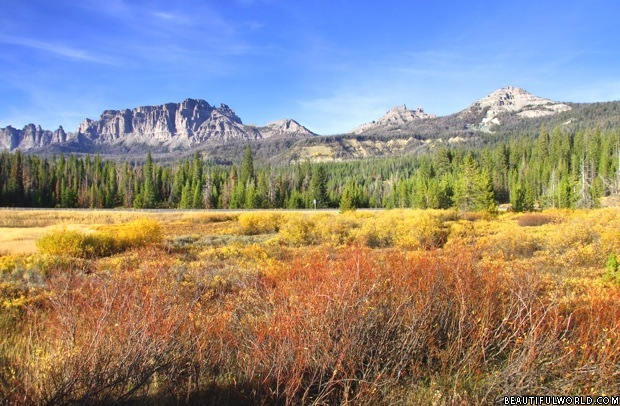 yellowstone-national-park-usa